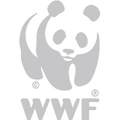 https://www.isibindi.co.za/wp-content/uploads/sites/15/2018/02/WWF-1.png