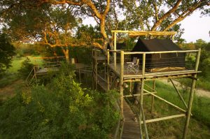 Once in a lifetime experience - sleeping out under the stars in the Kruger National Park
