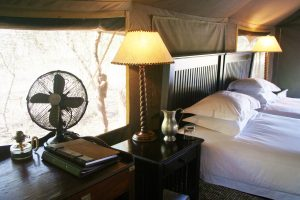Glamping heaven at Plains Tented Camp