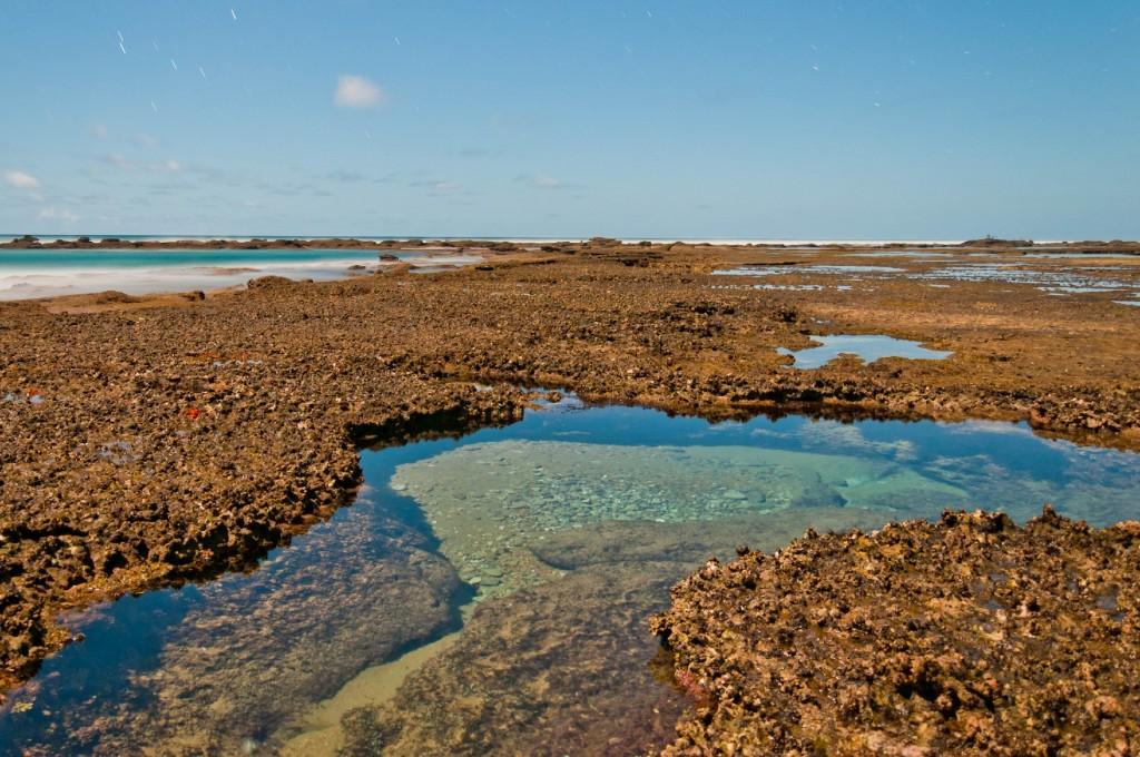 Rock pools at Mabibi - photograph by Carl Moller