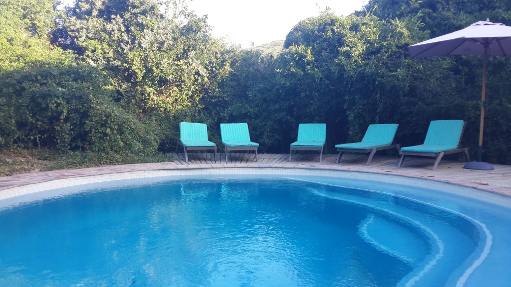 The Thonga swimming pool and loungers