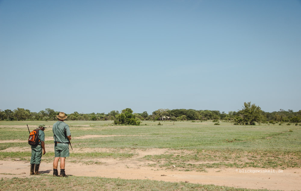 Doug and Albino in the african savannah. In the back, under the trees, is the Plains Camp.