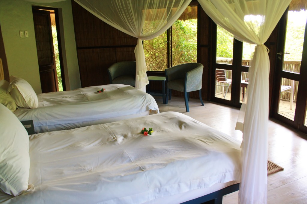 The spacious twin rooms at Thonga Beach Lodge