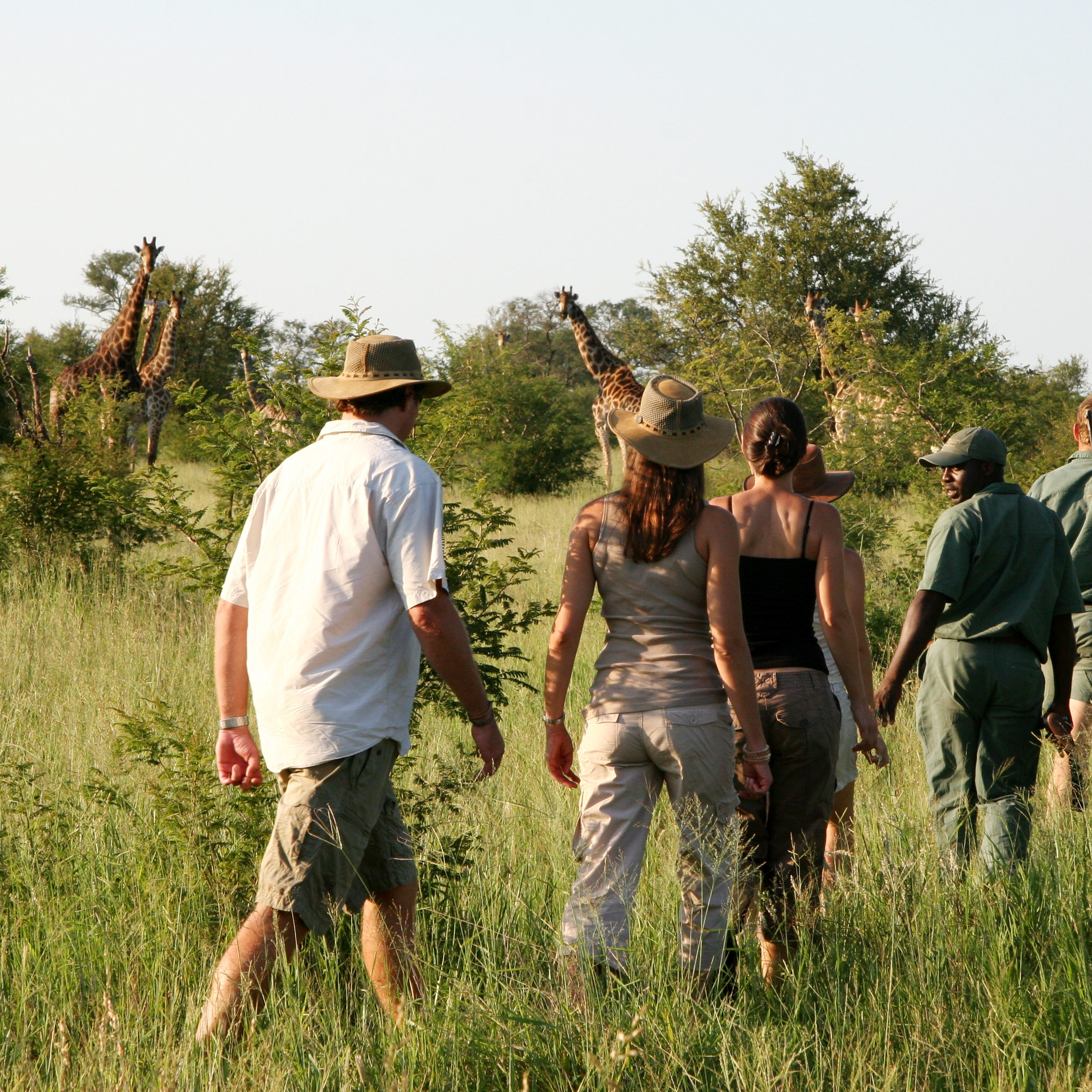 Rhino Walking Safari - photograph by Guy Upfold