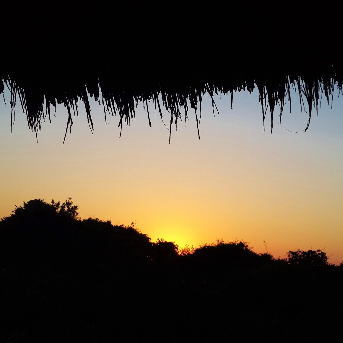 tbl-thatch-sunset-view-bm