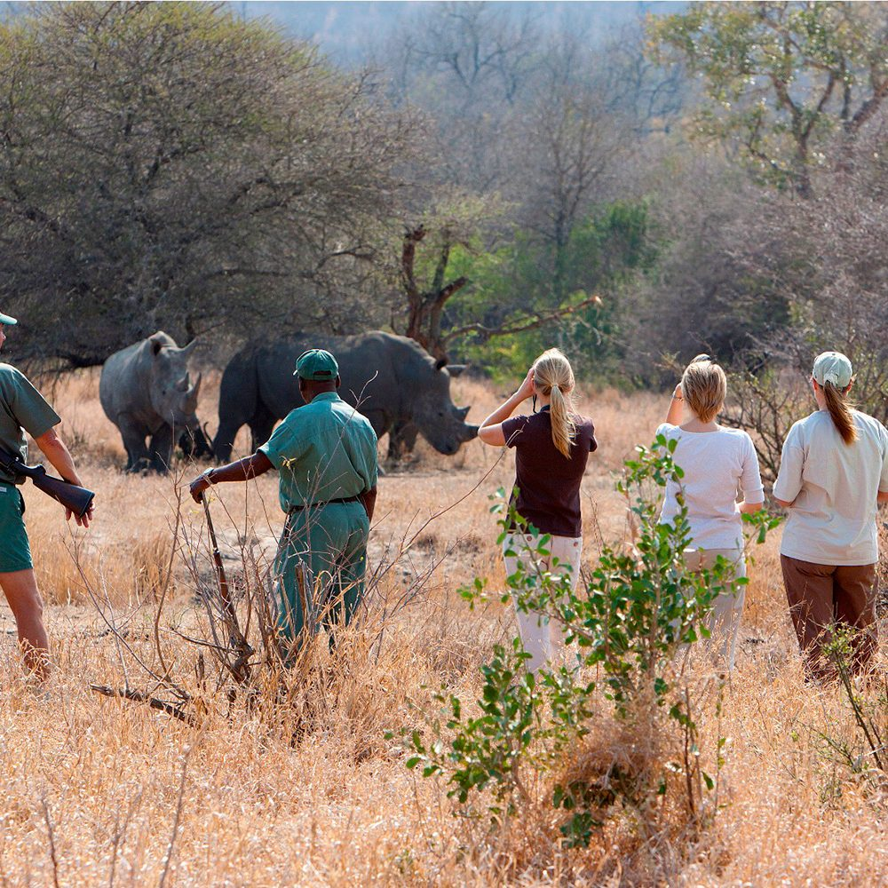 plains-camp-walking-with-rhino-circle